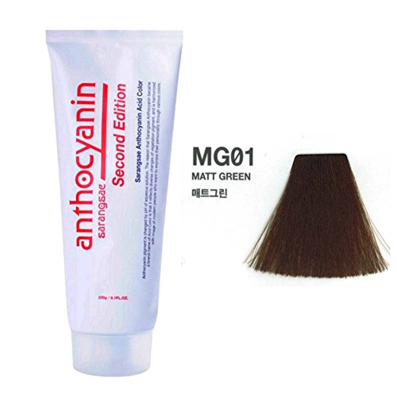しおれたインタラクションそのヘア マニキュア カラー セカンド エディション 230g セミ パーマネント 染毛剤 (Hair Manicure Color Second Edition 230g Semi Permanent Hair Dye) [並行輸入品] (MG01 Marr Green)