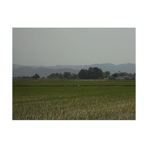 【精米】【Amazon.co.jp限定】宮城県...の紹介画像3