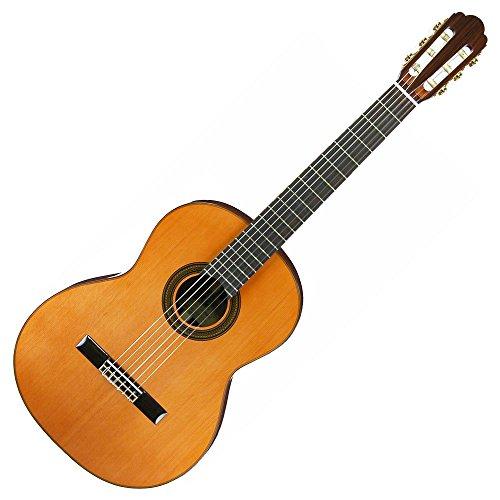 ARIA アリア クラシックギター ソフトケース付 A-50C