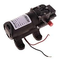 B Blesiya 電気水ポンプ マイクロ 高圧スプレーヤー 4.0L / Min 低消費電力 超静水圧 実用的 全2種 - 24Vダブルホース