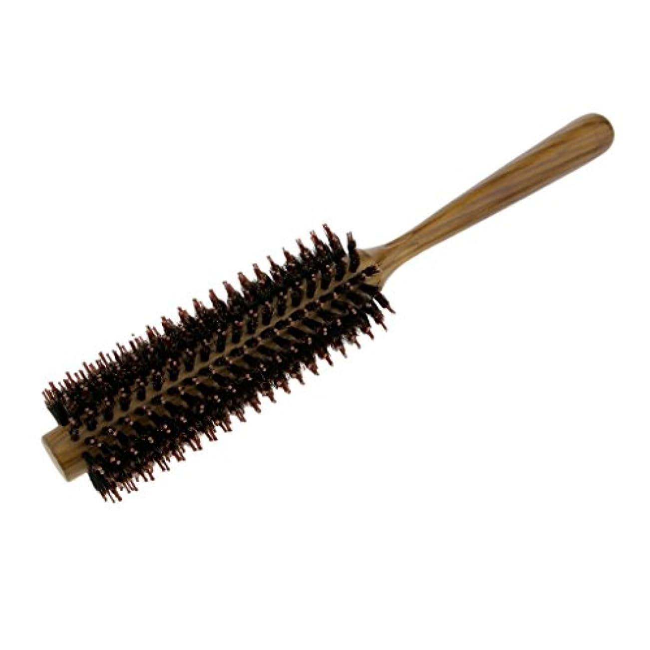 おんどりセールスマン変換するサロン毛カールヘアラウンドブラシバレルヘアスタイリング櫛ヘアブラシ - M