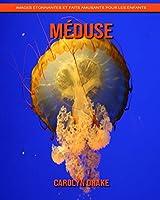 Méduse: Images étonnantes et faits amusants pour les enfants