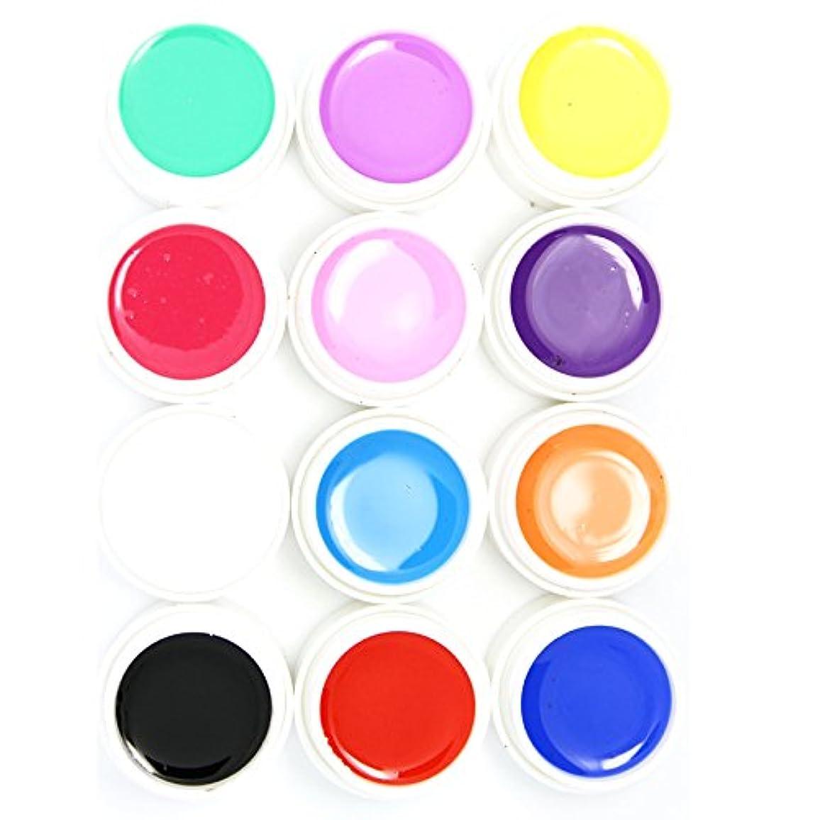 石膏論文虐待カラー ジェル UVジェル ネイルアート 発色綺麗 12色セット (1)