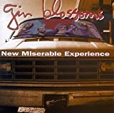 New Miserable Experience by Gin Blossoms (1992-07-28)