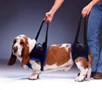 WalkAbout 前肢用 歩行補助ハーネス 小型犬用 S ブラック ペット介護 調節可能 マジックテープ バックル 歩行力が弱くなった愛犬のサポートに