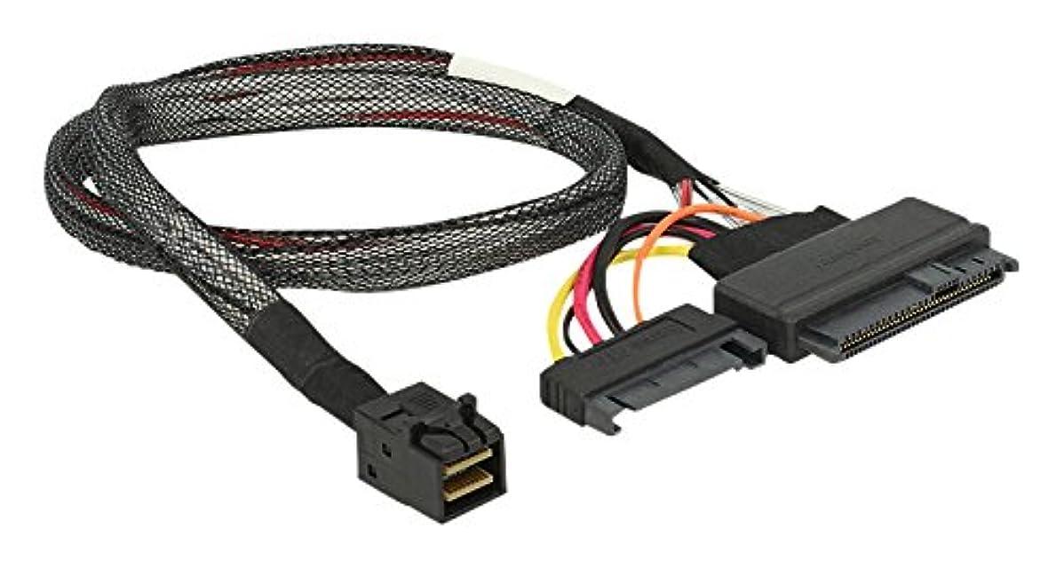 ジャンルバーベキュー分析Delock Cable SFF-8643 オス->U.2 SFF-8639 オス+SATA 電源コン、84819 (SFF-8639 オス+SATA Power Con 50cm)