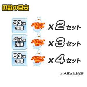 【バリューセット】▼ネオンテトラ(SM)(約2cm)(15匹) + ミックスグッピー(約3cm)(3ペア)[生体]