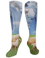 靴下,ストッキング,野生のジョーカー,実際,秋の本質,冬必須,サマーウェア&RBXAA Horses in The Meadow Socks Women's Winter Cotton Long Tube Socks Knee...