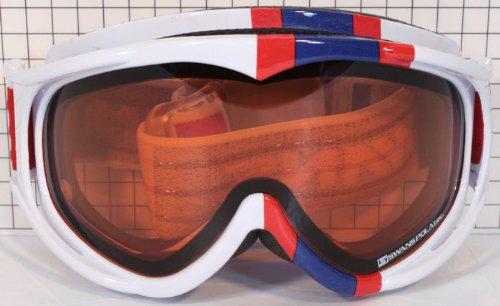 10-11 モデル SWANS(スワンズ) FZ-クーペ 偏光 ダブルレンズ FZ-COUPE-PDH W/BLホワイト/ブルーストライプ