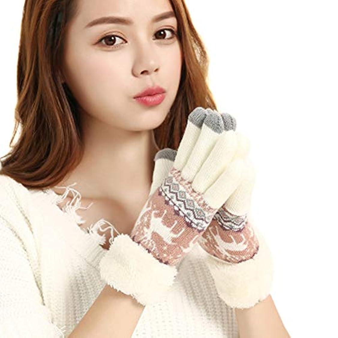 誘導腸海外Tengfly Women Touchscreen Gloves, Winter Warm Knit Gloves,Soft Extra-Warm Fleece Touchscreen Gloves,Snow Flower Knitting Thicken For Women Winter Outdoor 2019 New Christmas Gift
