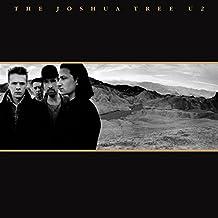 The Joshua Tree (2LP Vinyl)