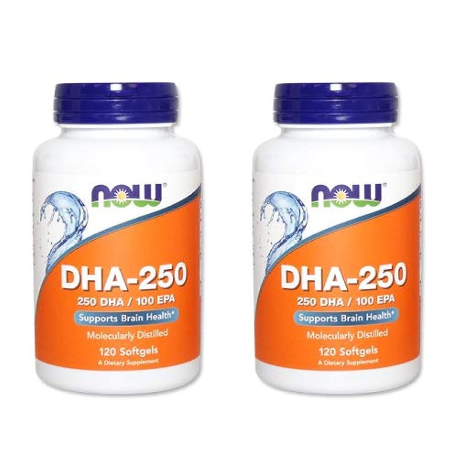 メロドラマ誇張するガジュマル【2個セット】【粒小さめ低含有タイプ】DHA-250 120粒(DHA&EPA配合) [海外直送品]