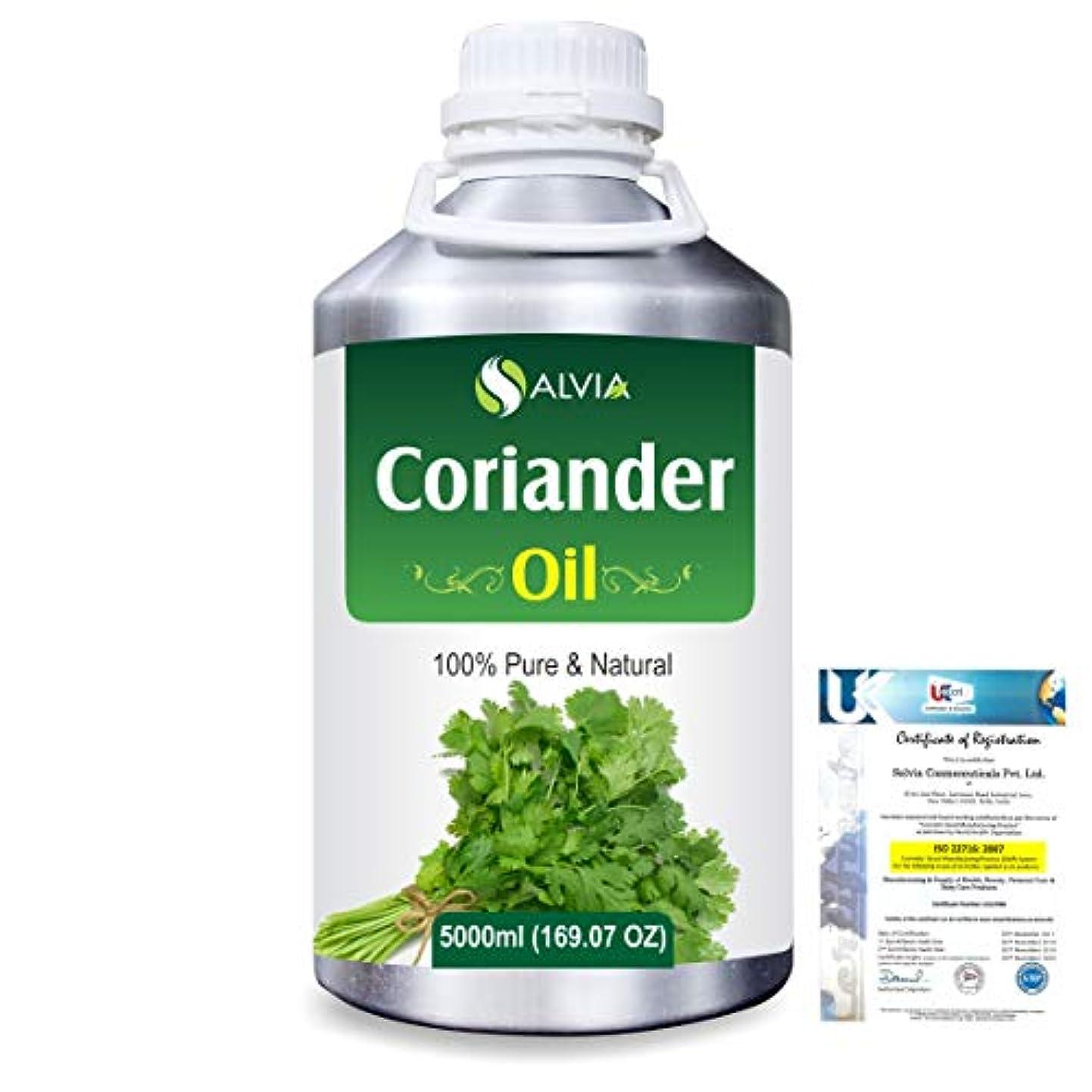 葉を集める興奮する二度Coriander (Coriandrum sativum) 100% Natural Pure Essential Oil 5000ml/169fl.oz.
