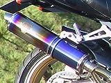 アールズギア(r's gear) フルエキゾーストマフラー ZZR1100 SONIC ツイン ドラッグブルー SK03-02DB