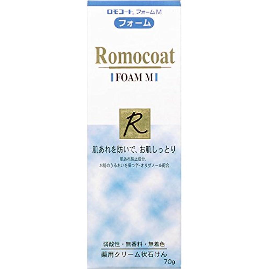 腹便宜引き出し全薬工業 ロモコート フォームM 70g (医薬部外品)