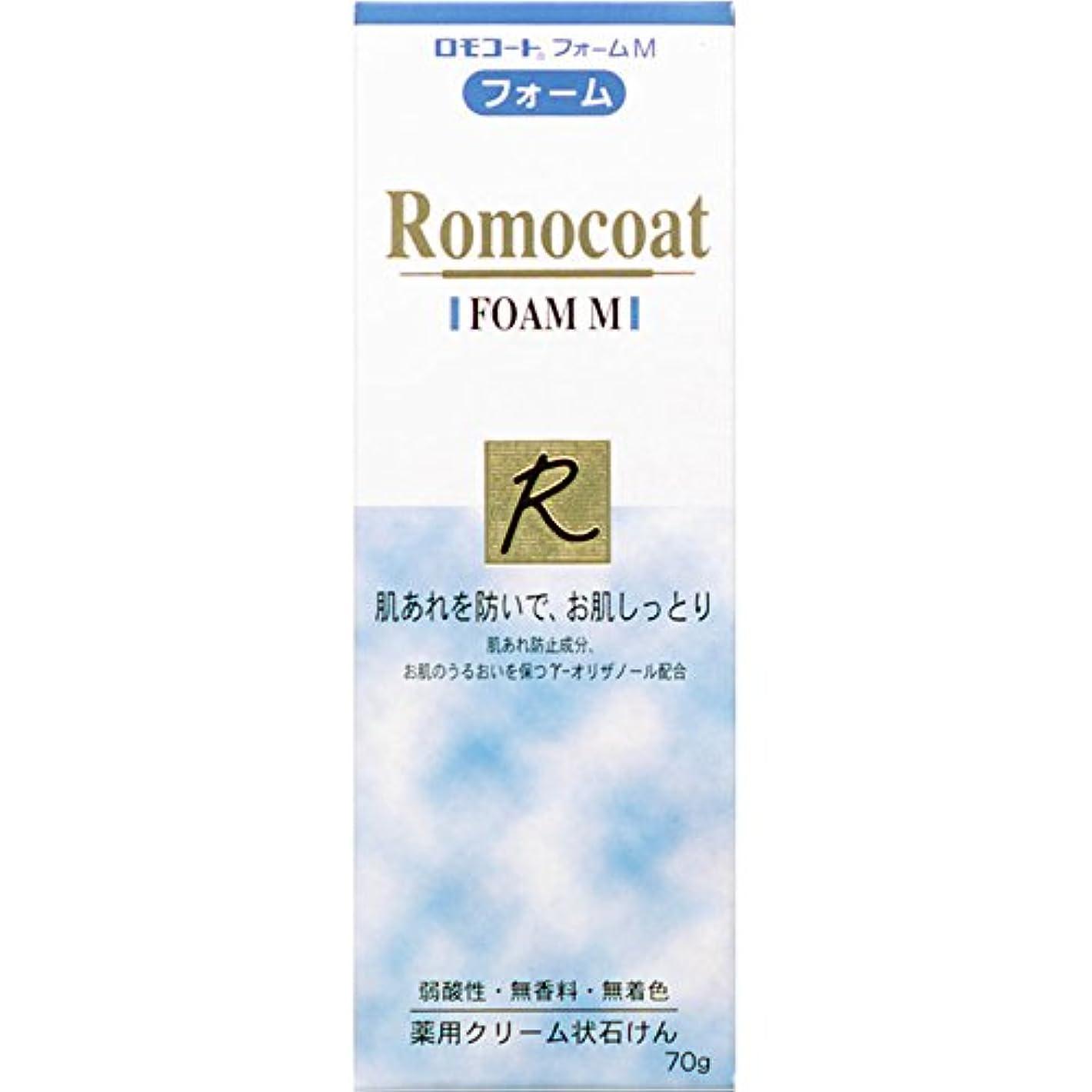 鉛筆儀式共和国ロモコート フォームM 70g