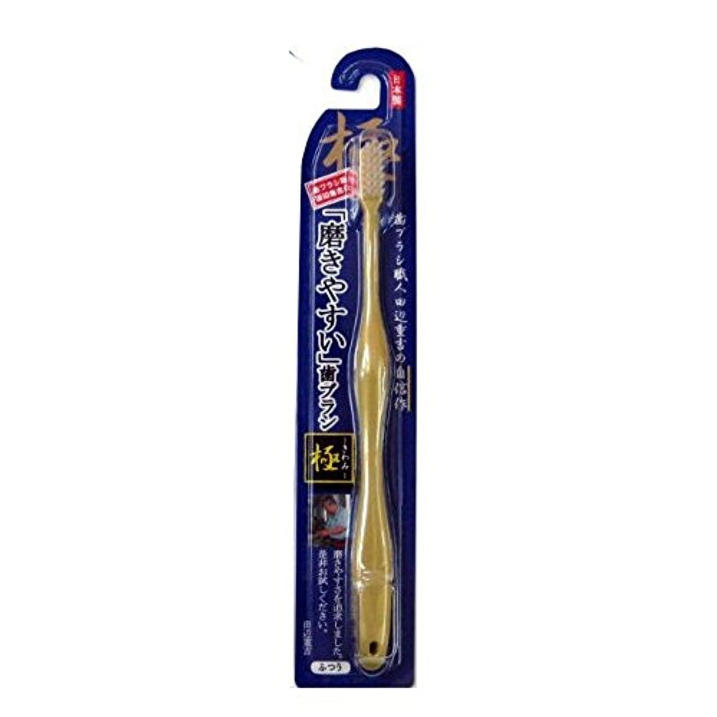 習字今晩エゴイズム磨きやすい歯ブラシ極 LT-09