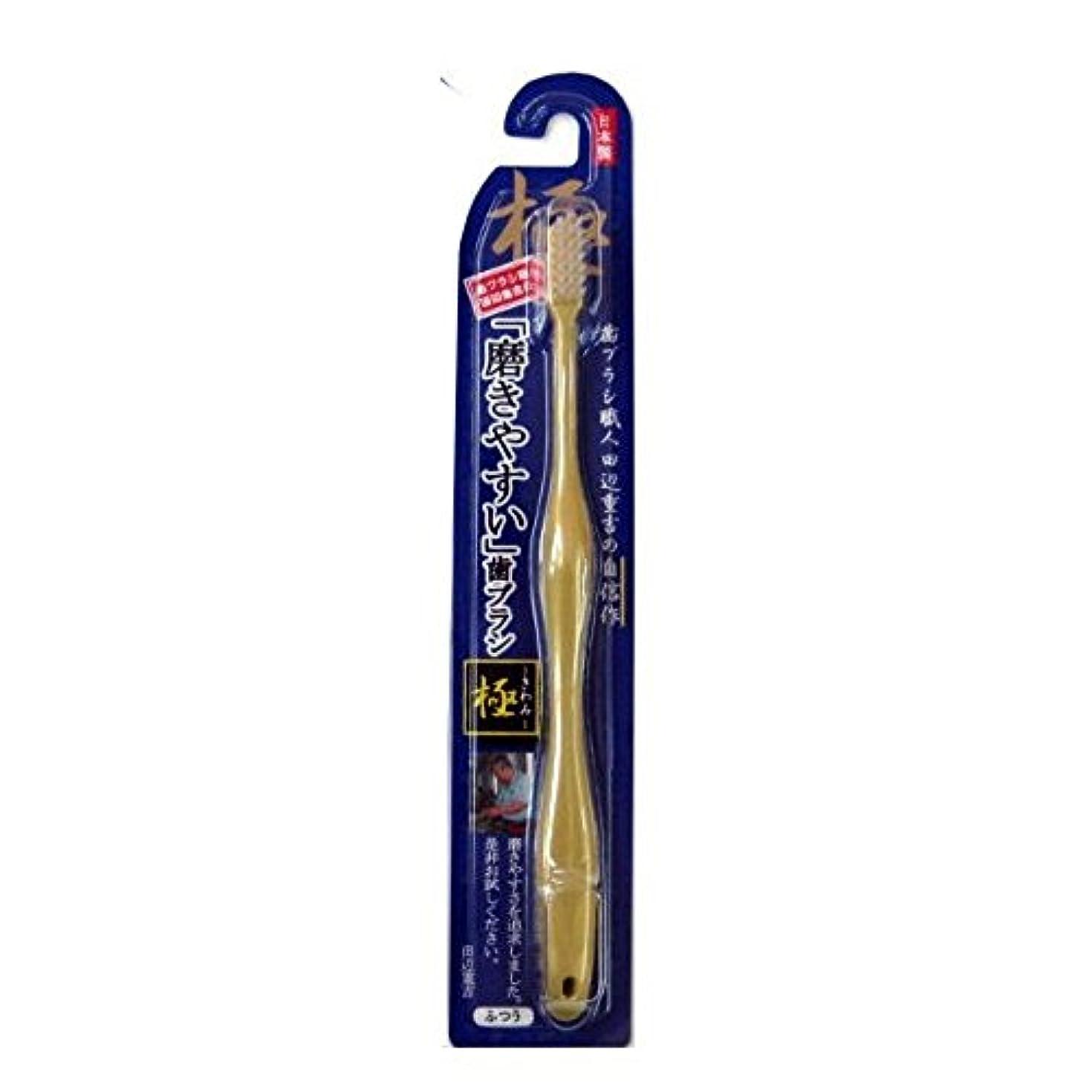 裸提唱する摩擦磨きやすい歯ブラシ極 LT-09