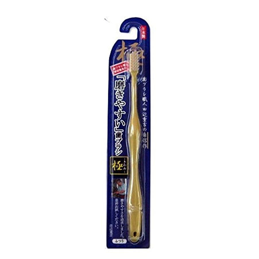 放射する範囲フィット磨きやすい歯ブラシ極 LT-09
