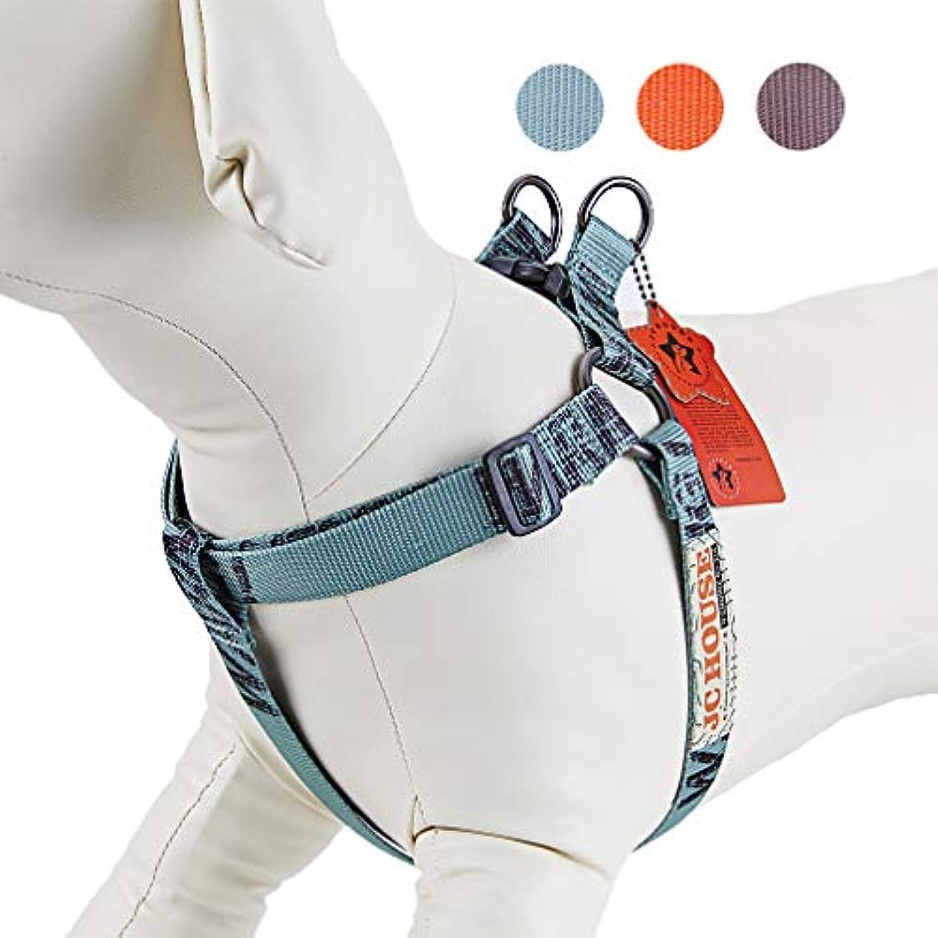 塊賞賛するベッドを作るJC HOUSE 犬用ハーネス 胴輪 小型犬 中型犬 大型犬 ドーク 散歩/訓練/お出かけ 簡単着脱 調節可能 引っ張り防止 軽量 ペット用品(グリーン L)