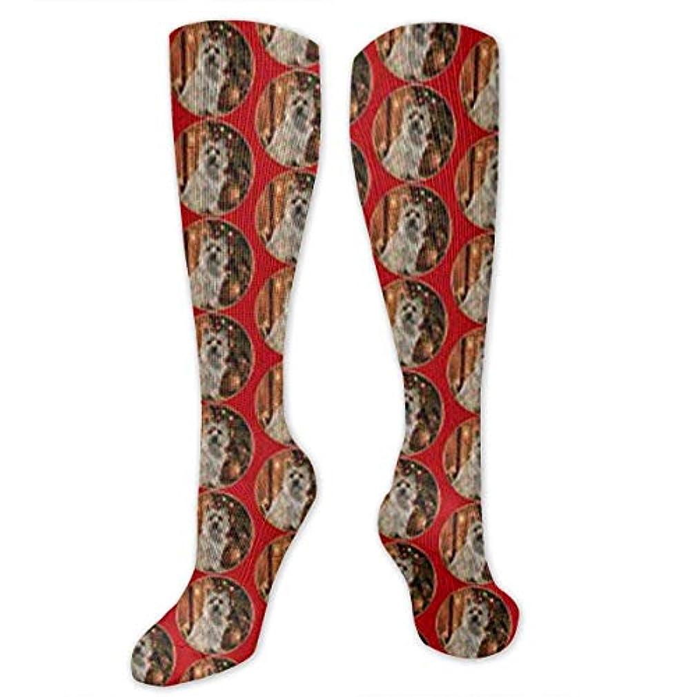 バッグシーンゼリー靴下,ストッキング,野生のジョーカー,実際,秋の本質,冬必須,サマーウェア&RBXAA Cairn Terrier Christmas Socks Women's Winter Cotton Long Tube Socks...