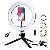 LEDリングライト 撮影照明用ライト 外径10インチ 10段階調光 3色モード USB電源 自撮り写真 YouTube生放送 美容化粧 ビデオカメラ撮影用