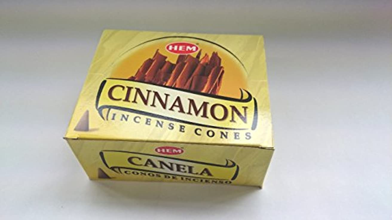 省略どのくらいの頻度でドラゴンHEM(ヘム)お香 シナモン コーンタイプ 1ケース(10粒入り1箱×12箱)