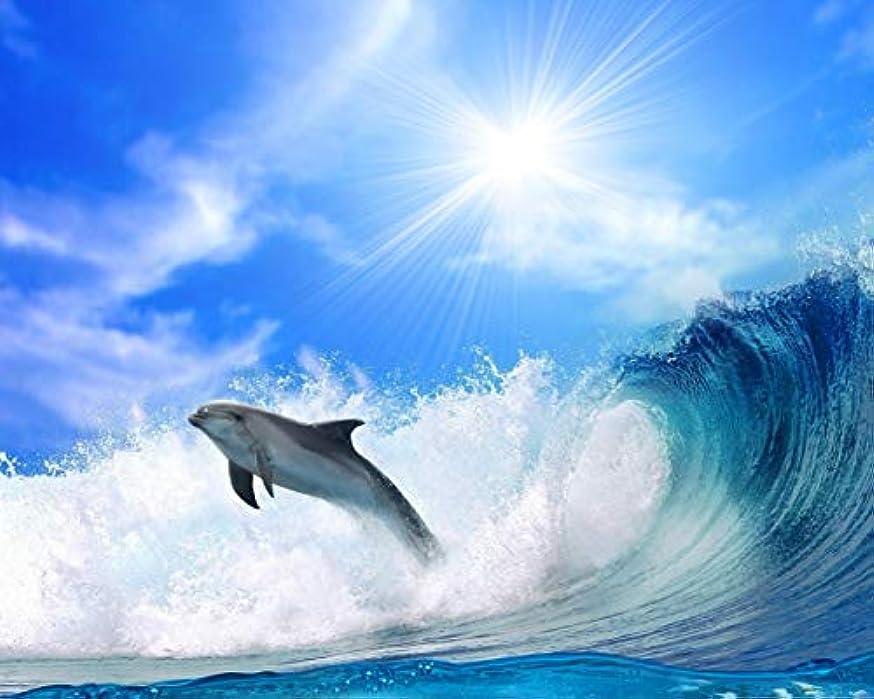 シリーズとティームオーバードローDiyの油絵ペイントバイナンバーキャンバスプリントウォールアートホーム飾るブラシフレーム大人子供初心者ギフト40×50センチ、海の風景