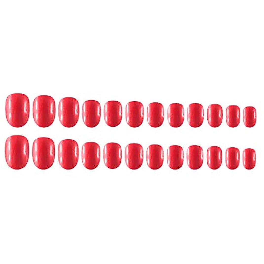 スカイ数刺しますDecdeal Decdeal ネイルチップ 24ピース 12異なるサイズ diy サロン ネイルアートツール 偽