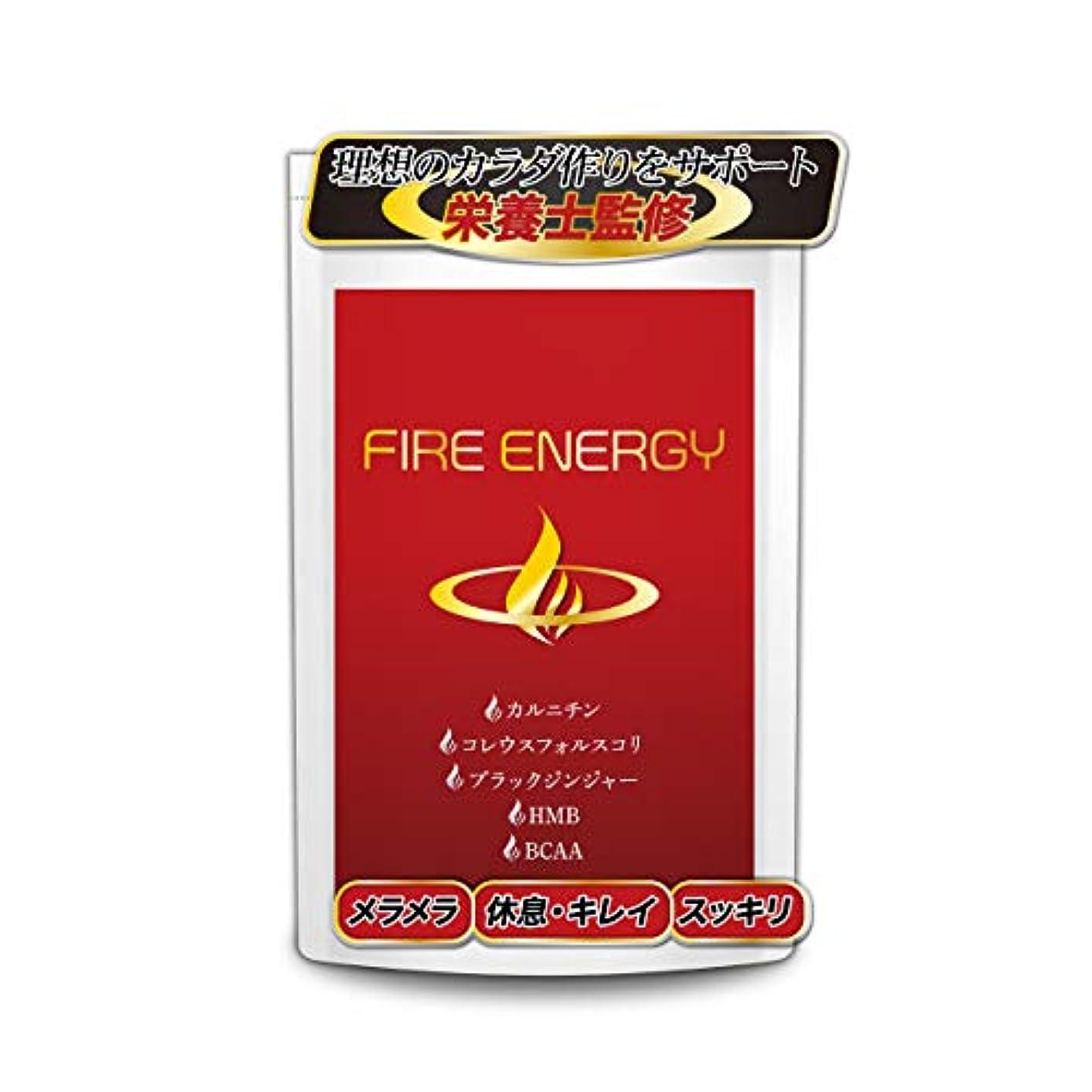 理論的一過性ヒットFIRE ENERGY ダイエット サプリ 燃焼 HMB BCAA サプリメント(30日分60粒入り)