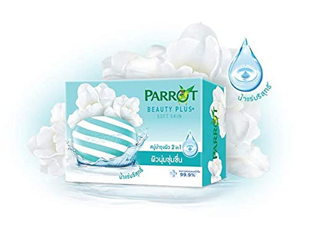 食料品店偽行うParrot Soap Reduce 99.9% bacteria accumulation Beauty Plus Sofe Skin (95 g x 4)