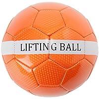 ビジョンクエスト サッカー トレーニングボール リフティングボール上級 VQ540106G01 OR