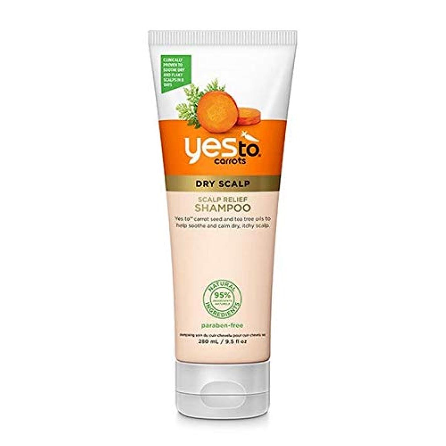 放棄する局ラバ[YES TO! ] はいニンジン頭皮リリーフシャンプーへ - Yes To Carrots Scalp Relief Shampoo [並行輸入品]
