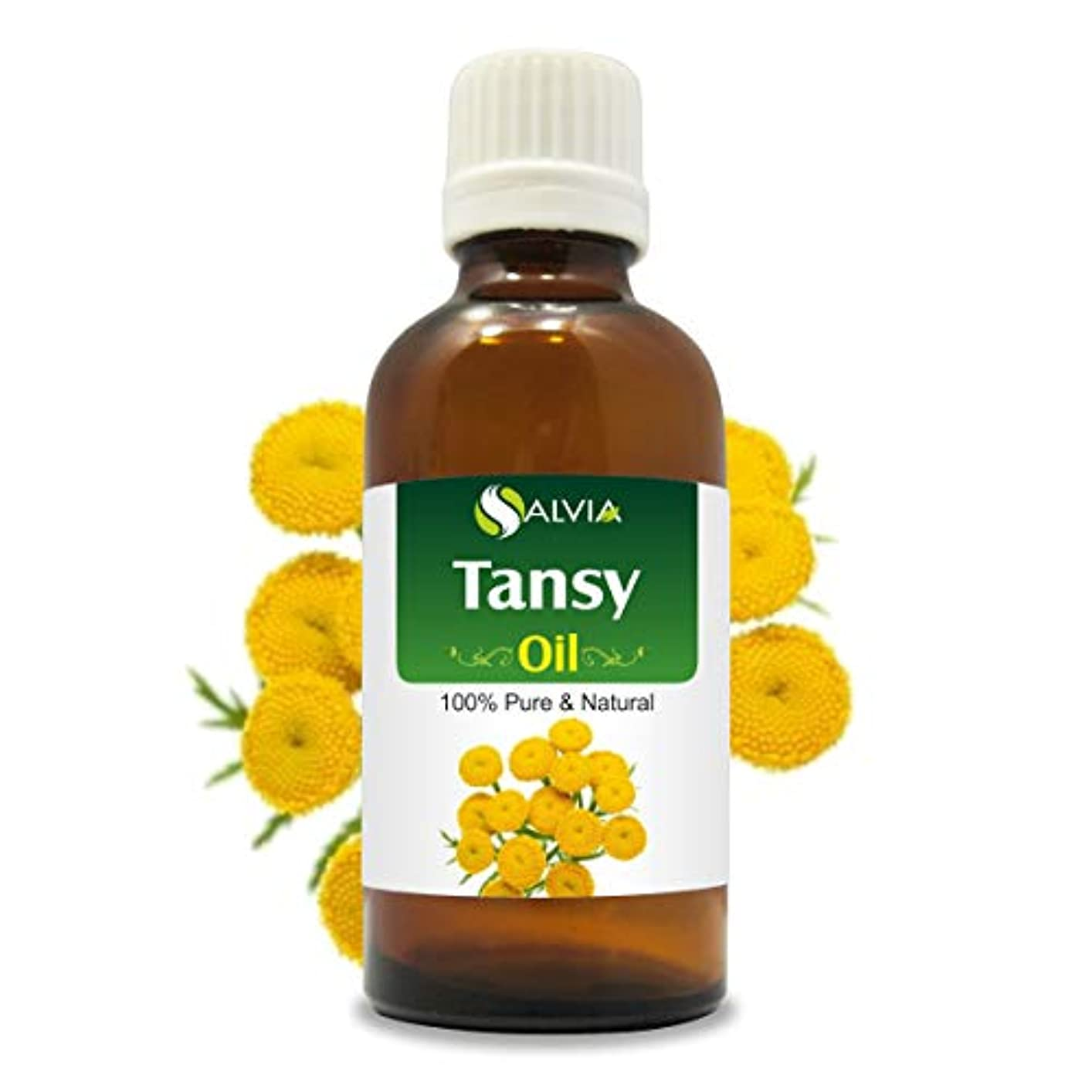 艦隊作家フォルダTansy Oil (Tanacetum vulgare) 100% Natural Pure Undiluted Uncut Essential Oil 15ml