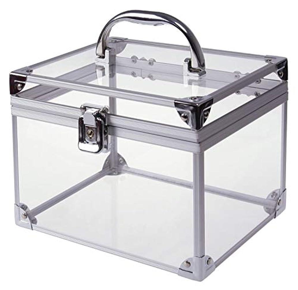 サワーピック墓地[moonfarm] アクリル製 透明 工具箱 小型 ツール ケース パーツ ボックス 作業 道具 用具 入れ メイクボックス クリア スケルトン モデル (段なしタイプ)