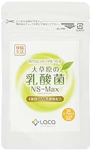大草原の乳酸菌NS-Max(36粒)×2セット