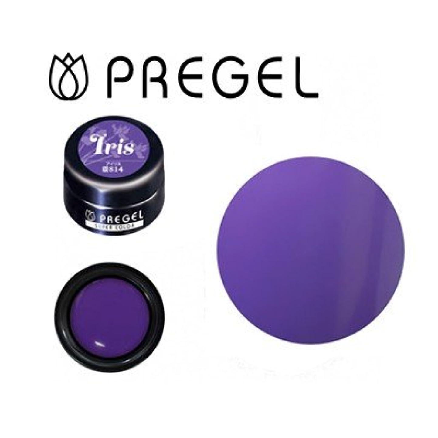 その採用する前提条件ジェルネイル カラージェル プリジェル PREGEL スーパーカラーEX PG-SE814 アイリス 3g