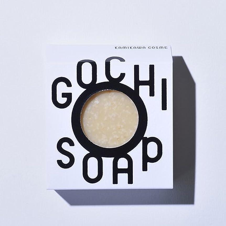 征服者より平らな評決GOCHI SOAP ゴチソープ ふじくらますも果樹園のりんごソープ