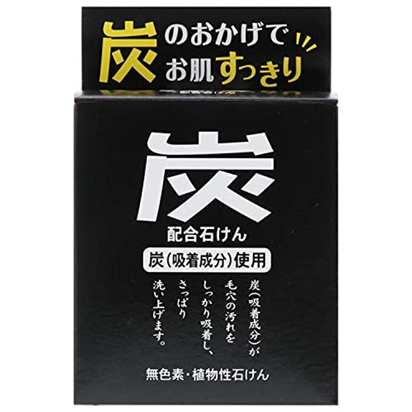 委員長急行する懐疑論炭石けん 100g