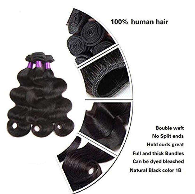 見えない乳製品順番ブラジルの波の人間の毛髪の織り方の巻き毛のレミーのバージンの毛の束100%の未加工の実質の人間の毛髪の自然な色(3束)