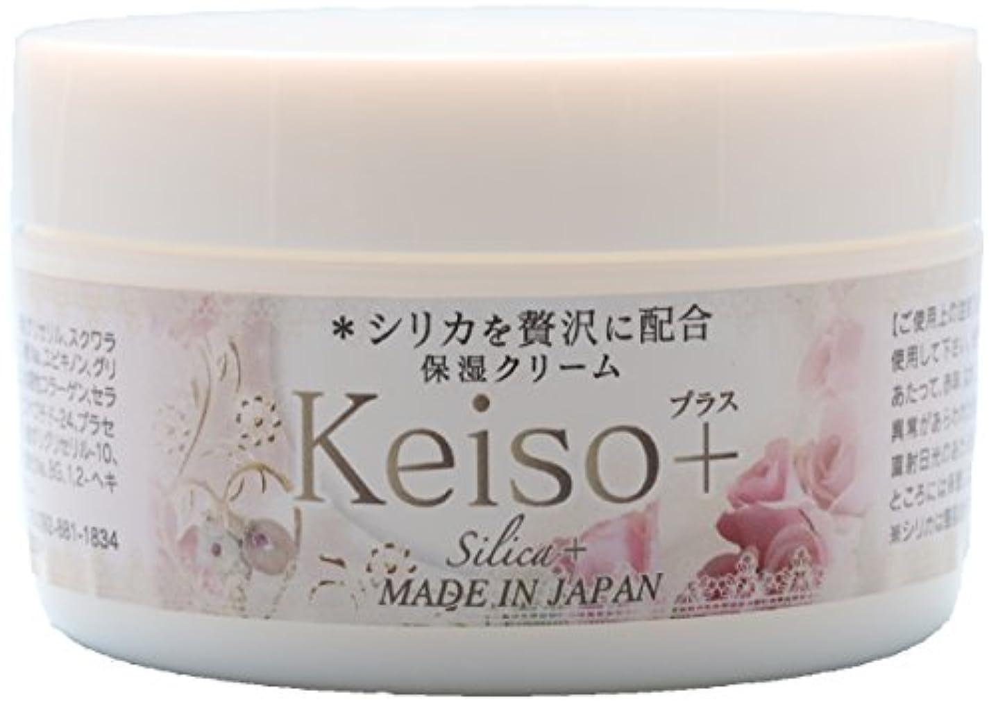 ハンディパス自己Keiso+ 高濃度シリカ(ケイ素) 保湿クリーム 100g Silica Cream