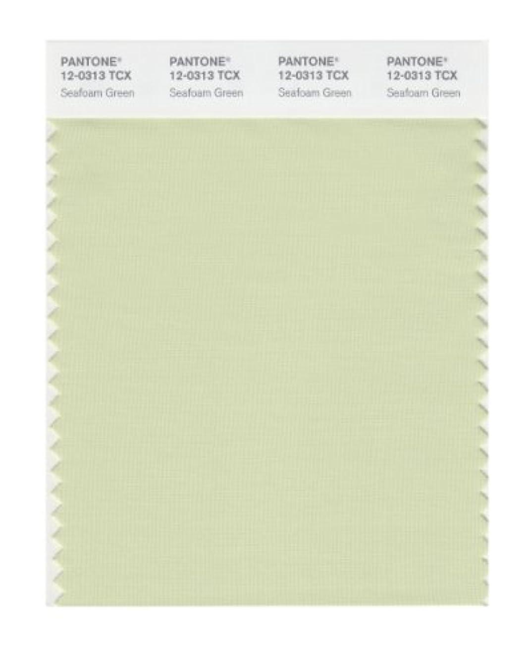 メタリック書道博覧会(Seafoam Green) - PANTONE SMART 12-0313X Colour Swatch Card, Seafoam Green