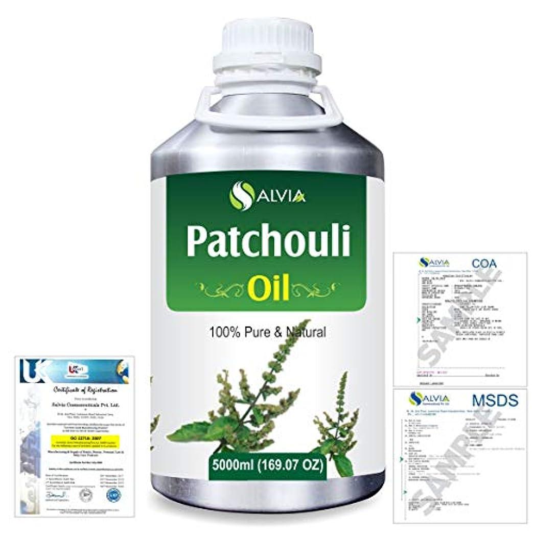 近代化隣接コミットPatchouli (Pogostemon cablin) 100% Natural Pure Essential Oil 5000ml/169fl.oz.