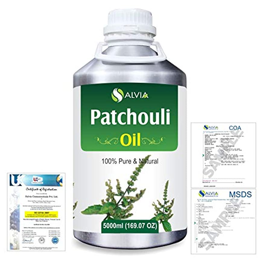 カスケード紀元前導体Patchouli (Pogostemon cablin) 100% Natural Pure Essential Oil 5000ml/169fl.oz.