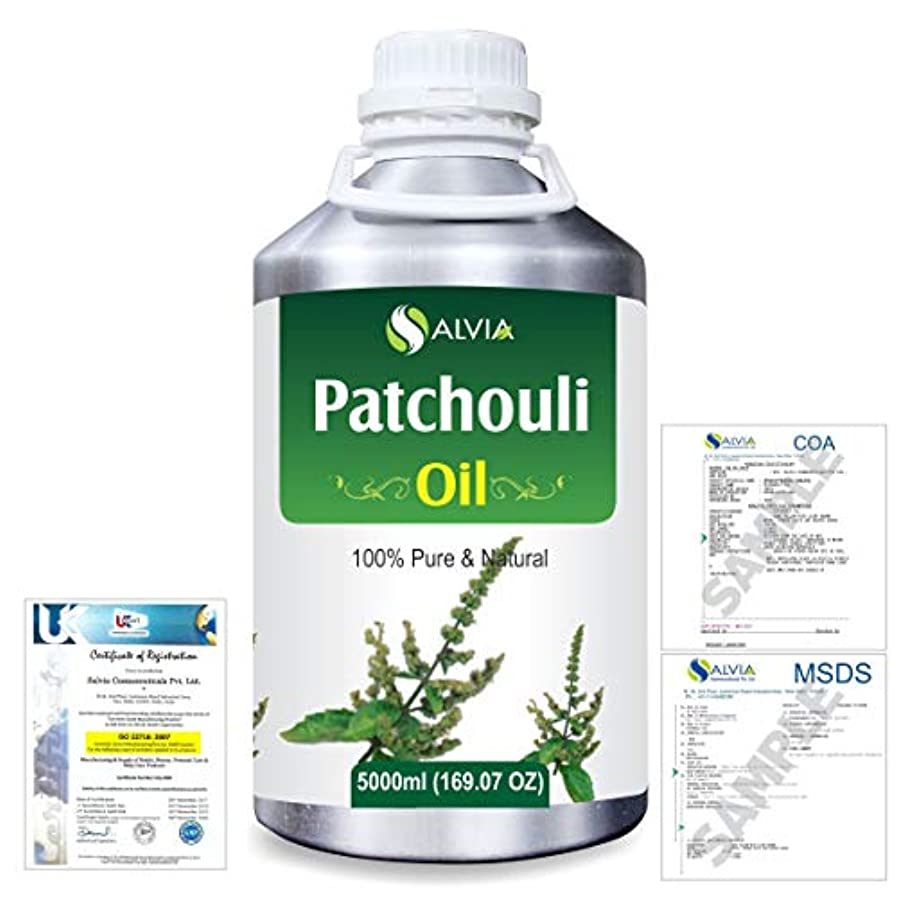 モールス信号けがをする平方Patchouli (Pogostemon cablin) 100% Natural Pure Essential Oil 5000ml/169fl.oz.