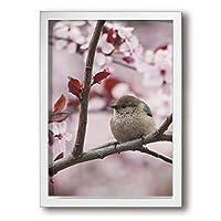 ホワイトサン ピンクの花 鳥 フォトフレーム A4 フレーム 壁掛け 壁アート 装飾画 壁飾り インテリア 部屋飾り アート ファション 装飾 枠付き 壁絵 現代壁の絵 絵 プレゼント ポスター アートフレーム パネル
