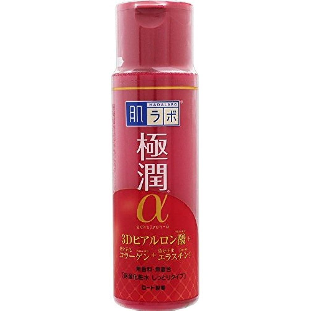 病燃やす紛争肌ラボ 極潤α ハリ化粧水しっとりタイプ 170mL