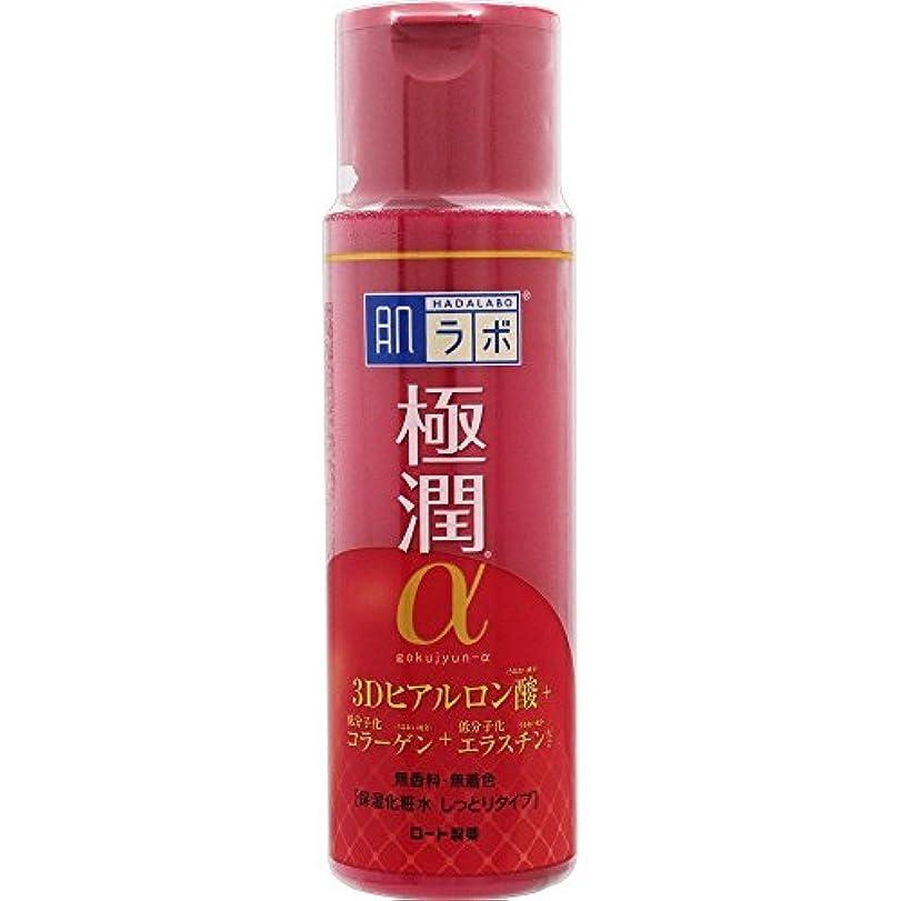 組み込むストレスの多い地殻肌ラボ 極潤α ハリ化粧水しっとりタイプ 170mL