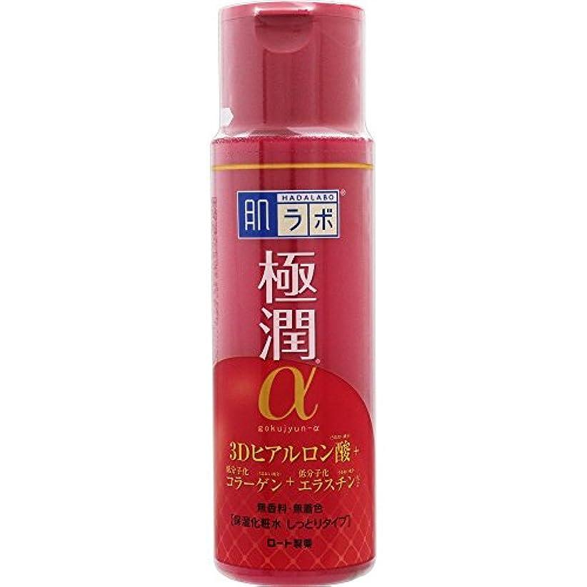 区別するコウモリ馬鹿げた肌ラボ 極潤α ハリ化粧水しっとりタイプ 170mL