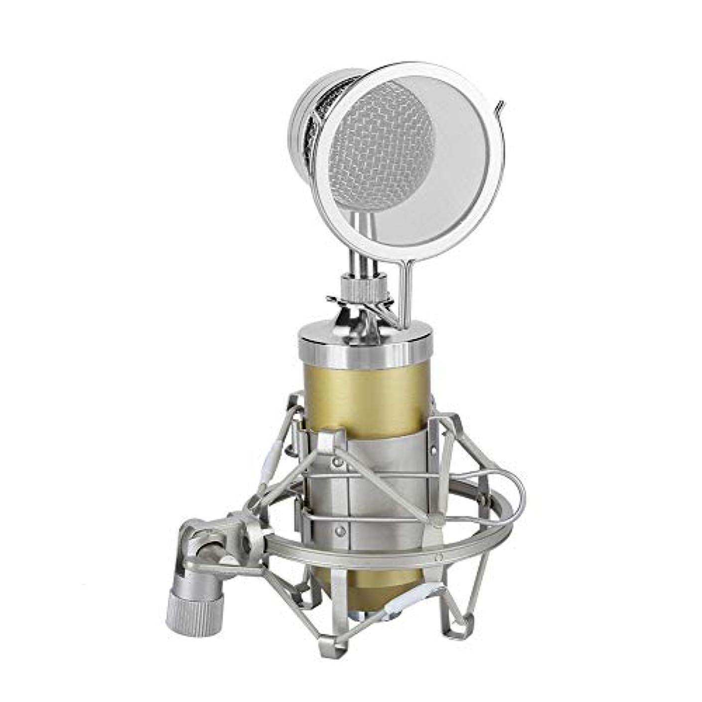 契約するヒップ邪魔するRicher-R コンデンサーマイクロホン スタジオコンデンサーマイクキットセット プロフェッショナルマイク ショックマウント付き ポップシールドフィルター 3.5mmオーディオ